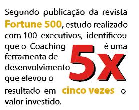 coaching fortune 500 pesquisa
